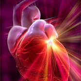 LOWERING BLOOD PRESSURE MAY HELP REDUCE WOMEN?S HEART DISEASE RISK.